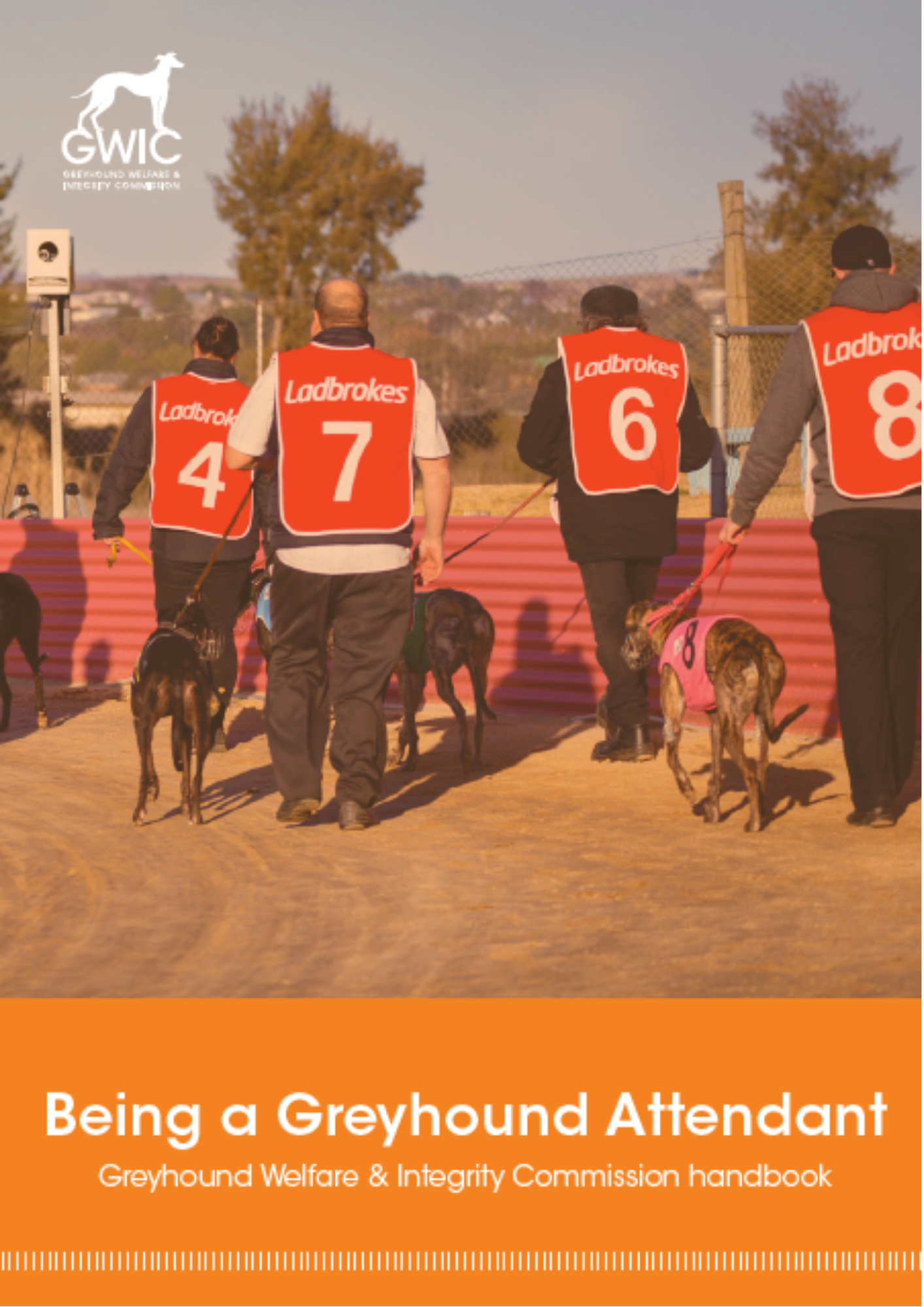Click to read Being a Greyhound Attendant